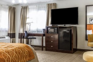 Comfort Inn Santa Cruz - Flatscreen TVs In All Our Rooms